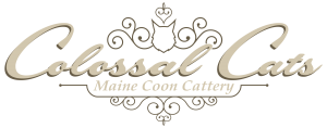 Colossal Cats Logo